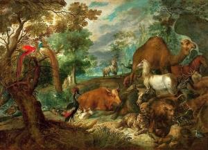 flora&fauna